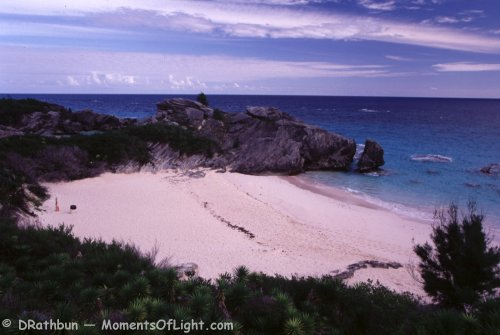 Pink Beaches South coast Bermuda